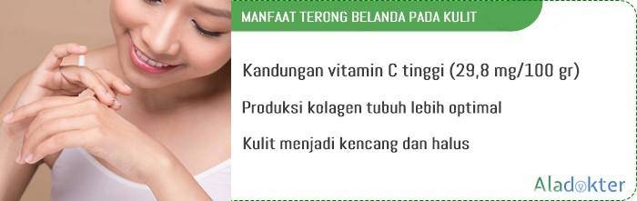 manfaat terong pada kulit aladokter