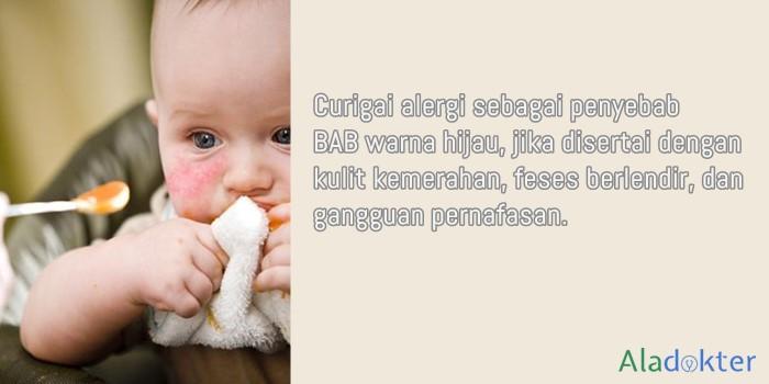 alergi penyebab bab bayi warna hijau