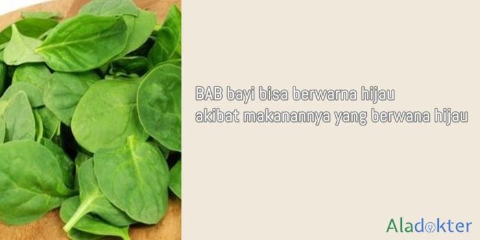 makanan hijau penyebab bab bayi warna hijau