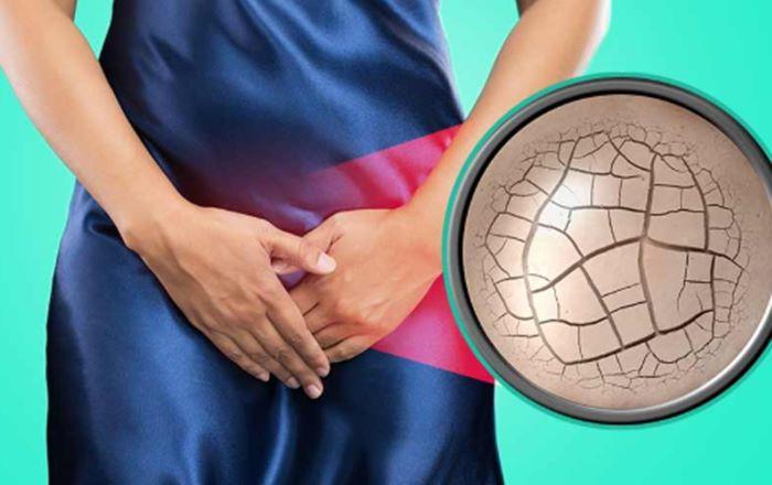 vagina kering gejala menopause