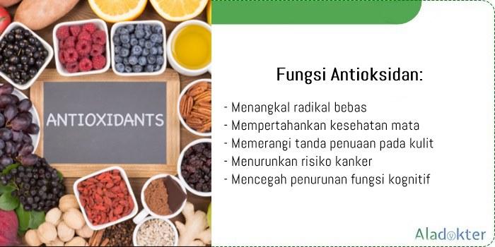 fungsi antioksidan