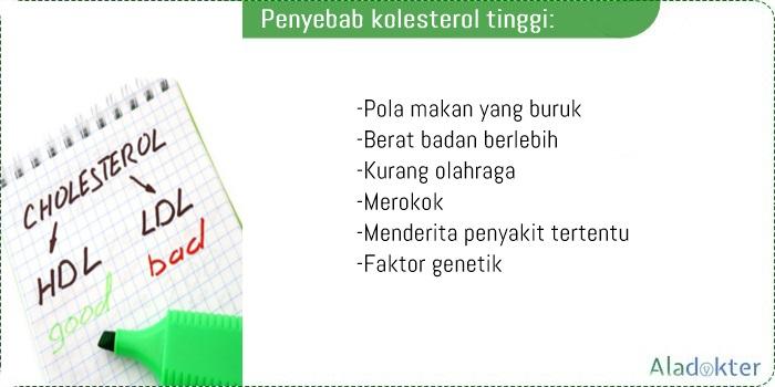 Penyebab kolesterol tinggi